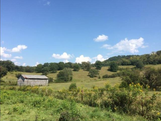 290 Waller Lane, Hartsville, TN 37074 (MLS #1967553) :: RE/MAX Homes And Estates