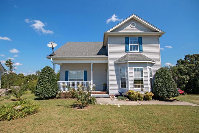 117 Thomas Holman Cir, Springfield, TN 37172 (MLS #1967741) :: RE/MAX Choice Properties