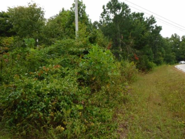 16 .27Ac Hanging Limb Hwy, Crawford, TN 38554 (MLS #RTC1968279) :: REMAX Elite