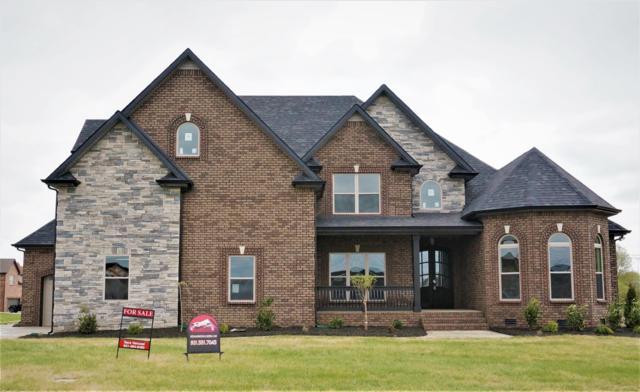 63 Hartley Hills, Clarksville, TN 37043 (MLS #1968825) :: EXIT Realty Bob Lamb & Associates