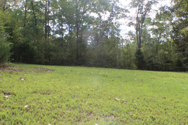 0 Bob Hollow Rd, Burns, TN 37029 (MLS #1969317) :: FYKES Realty Group