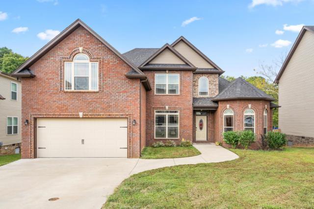 1635 Raven Rd, Clarksville, TN 37042 (MLS #1969433) :: RE/MAX Choice Properties
