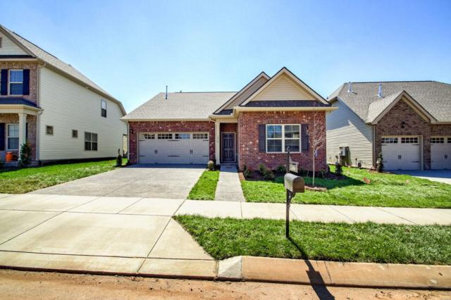 287 Telavera Drive, Lot 220, White House, TN 37188 (MLS #1969447) :: Team Wilson Real Estate Partners