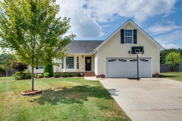 207 Coleman Dr, White Bluff, TN 37187 (MLS #1969675) :: Nashville on the Move