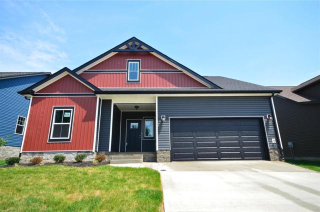 204 Eagles Talon Court, Clarksville, TN 37040 (MLS #1969712) :: DeSelms Real Estate