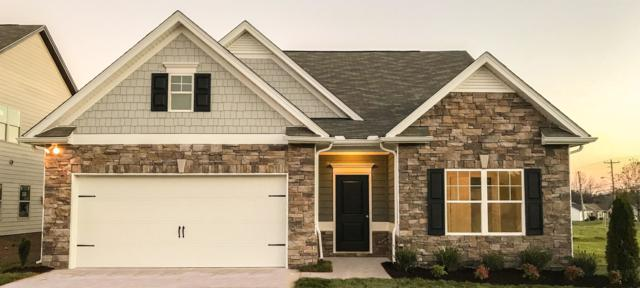 900 Carnation Drive, Spring Hill, TN 37174 (MLS #1970178) :: Nashville on the Move