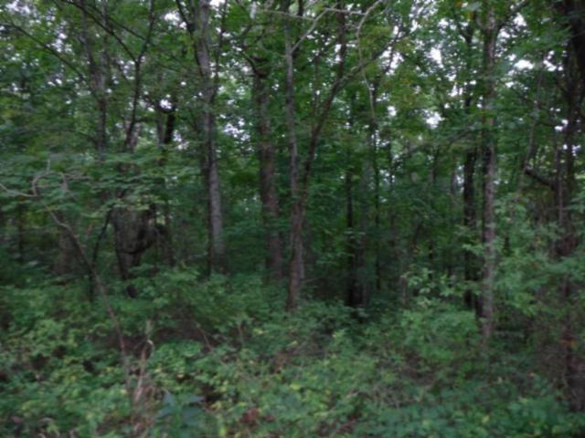 5 .30Ac Glenobey Rd, Jamestown, TN 38556 (MLS #1970525) :: Team Wilson Real Estate Partners