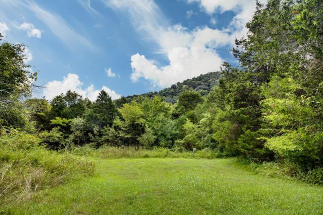 0 Honey Prong Rd, Hartsville, TN 37074 (MLS #1970872) :: Nashville On The Move