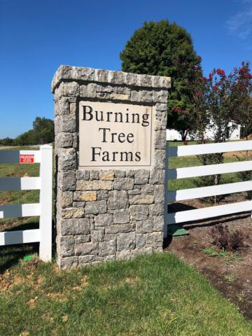 8008 Burning Tree Farms Road, Arrington, TN 37014 (MLS #1971251) :: Maples Realty and Auction Co.