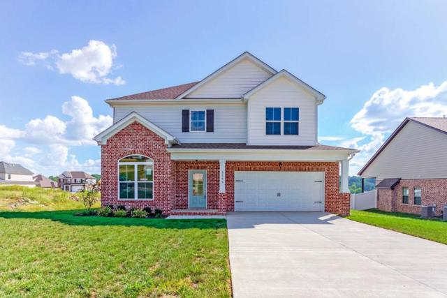 5543 Stonefield Drive, Smyrna, TN 37167 (MLS #1972768) :: RE/MAX Choice Properties
