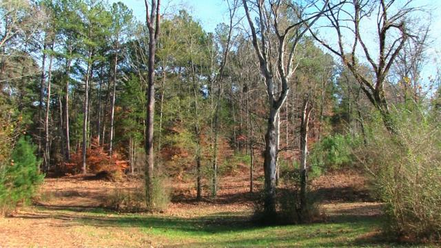 0 Sardis Scotts Hill Rd, Sadris, TN 38371 (MLS #1972814) :: DeSelms Real Estate