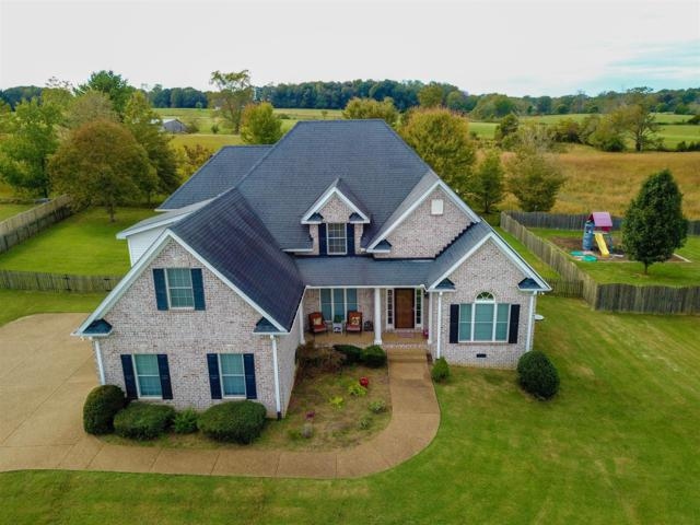 7133 Chessington Drive, Fairview, TN 37062 (MLS #1973277) :: Exit Realty Music City