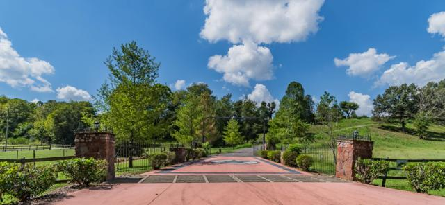 1734 Mcmahan Hollow Rd, Pleasant View, TN 37146 (MLS #1973499) :: Christian Black Team