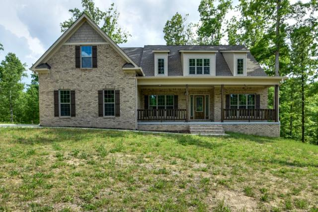 219 Cherokee Dr, White Bluff, TN 37187 (MLS #1973641) :: Oak Street Group
