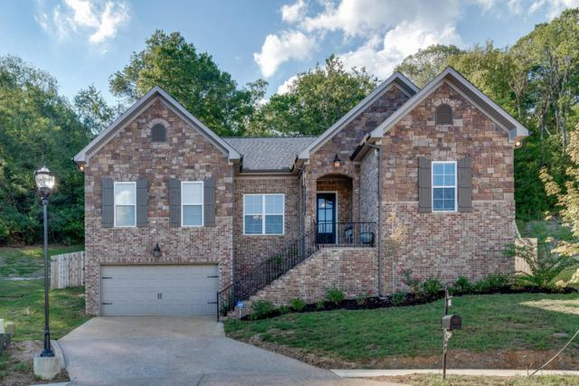 821 Doncaster Ln, Nashville, TN 37221 (MLS #1973888) :: The Milam Group at Fridrich & Clark Realty