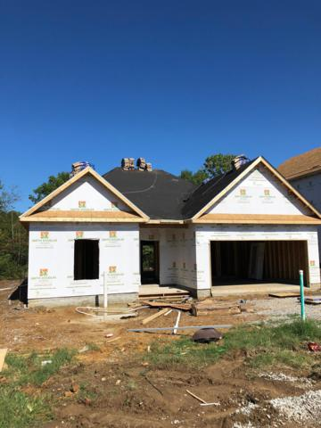 971 Carnation Drive, Spring Hill, TN 37174 (MLS #1974079) :: Nashville on the Move