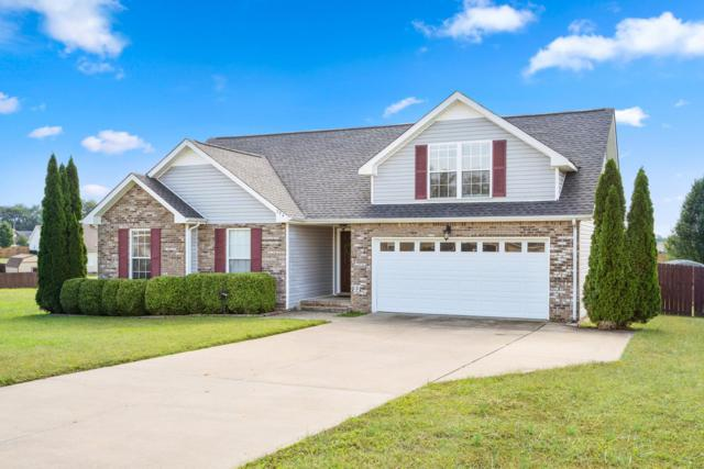 794 Stella Ct, Clarksville, TN 37040 (MLS #1976634) :: EXIT Realty Bob Lamb & Associates