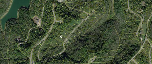 0 Rutherford Ln Lot 97, Smithville, TN 37166 (MLS #1977347) :: The Helton Real Estate Group