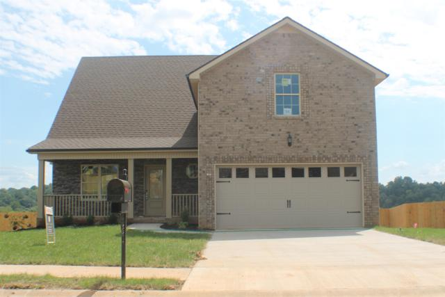 456 Mirren Cir, Clarksville, TN 37042 (MLS #1977555) :: DeSelms Real Estate