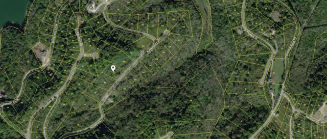 0 Rutherford Ln Lot 99, Smithville, TN 37166 (MLS #1977595) :: The Helton Real Estate Group