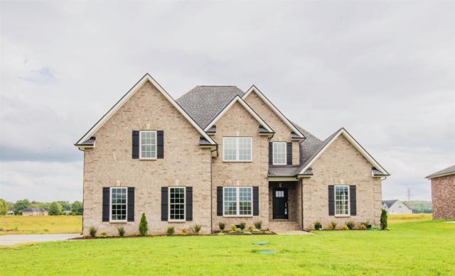 1517 North Side Dr, Murfreesboro, TN 37130 (MLS #1978460) :: John Jones Real Estate LLC