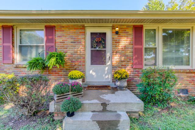 135 Kingswood Dr, Clarksville, TN 37043 (MLS #1979137) :: Maples Realty and Auction Co.