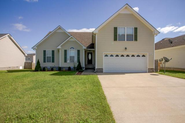3787 Cindy Jo Dr N, Clarksville, TN 37040 (MLS #1979389) :: The Kelton Group