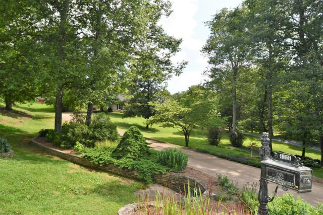 1121 Glenwood Dr, Columbia, TN 38401 (MLS #1979885) :: John Jones Real Estate LLC