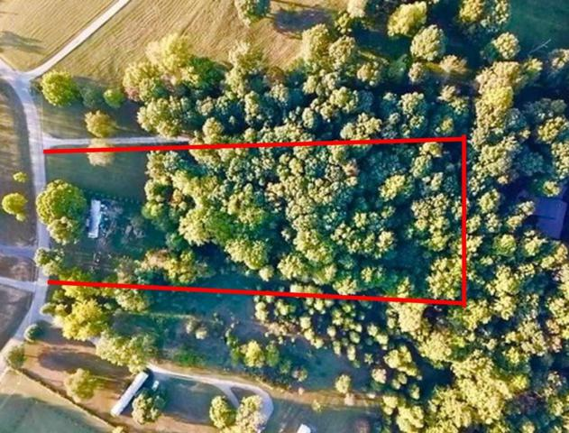382 S Ray Rd, Portland, TN 37148 (MLS #1980623) :: Nashville on the Move