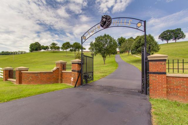 1731 Nashville Hwy, Columbia, TN 38401 (MLS #1980940) :: The Matt Ward Group