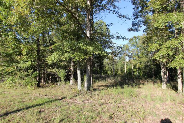 0 Dunaway Ridge Rd, Dover, TN 37058 (MLS #1981159) :: Christian Black Team