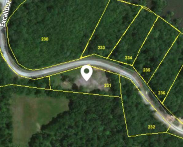 1256 Excalibur Trl, Cedar Grove, TN 38321 (MLS #1981451) :: Nashville on the Move