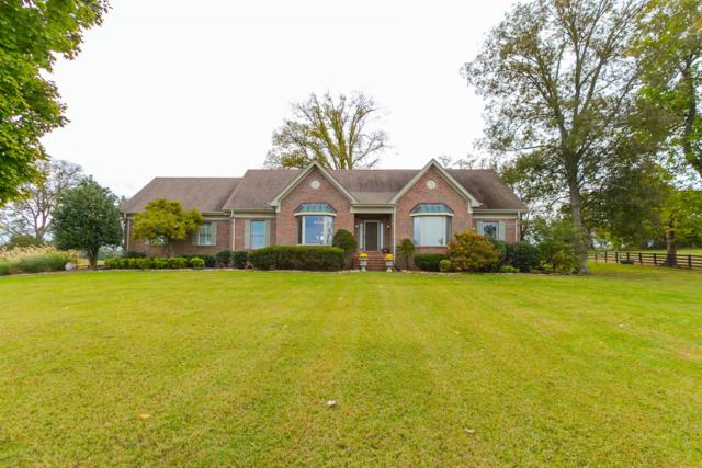 145 Minkslide Rd, Bell Buckle, TN 37020 (MLS #1981535) :: Maples Realty and Auction Co.