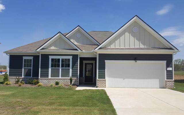 203 Princeton Drive Lot 47, Lebanon, TN 37087 (MLS #1981638) :: Team Wilson Real Estate Partners