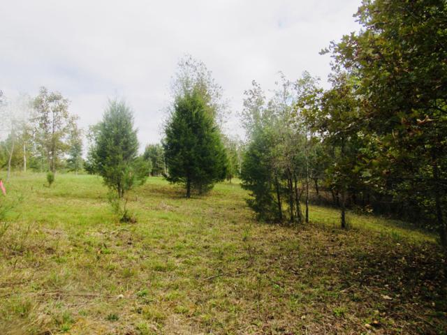 2 Deer Haven Rd, Indian Mound, TN 37079 (MLS #1981658) :: Maples Realty and Auction Co.