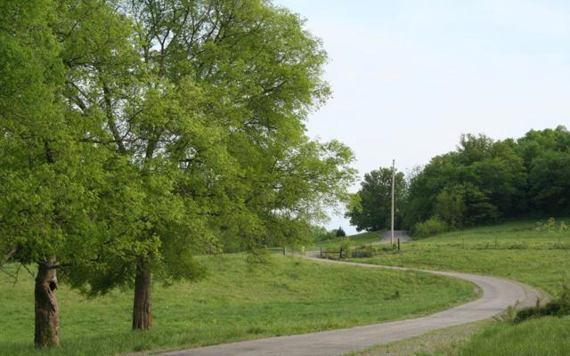 0 Hwy 82E, Bell Buckle, TN 37020 (MLS #1981905) :: Maples Realty and Auction Co.