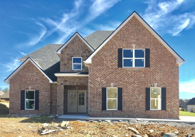 903 Paislee Raine Drive, Smyrna, TN 37167 (MLS #1982030) :: EXIT Realty Bob Lamb & Associates