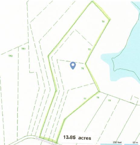 0 Horseshoe Bend Ln, Elmwood, TN 38560 (MLS #1982143) :: HALO Realty