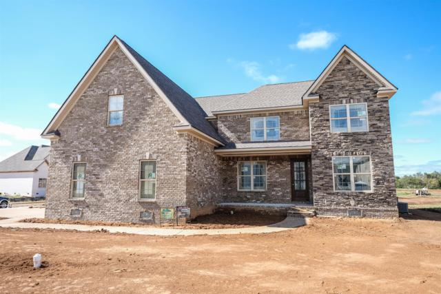 4008 Cardigan Ln (Lot 259), Spring Hill, TN 37174 (MLS #1982188) :: Felts Partners