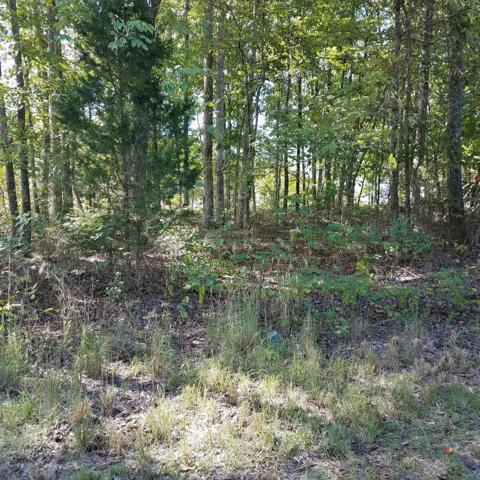 0 Old Sams Creek Rd Lot 228, Pegram, TN 37143 (MLS #1983227) :: Christian Black Team
