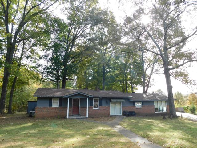 135 Scotts Chapel Road, Cumberland City, TN 37050 (MLS #1983411) :: Christian Black Team