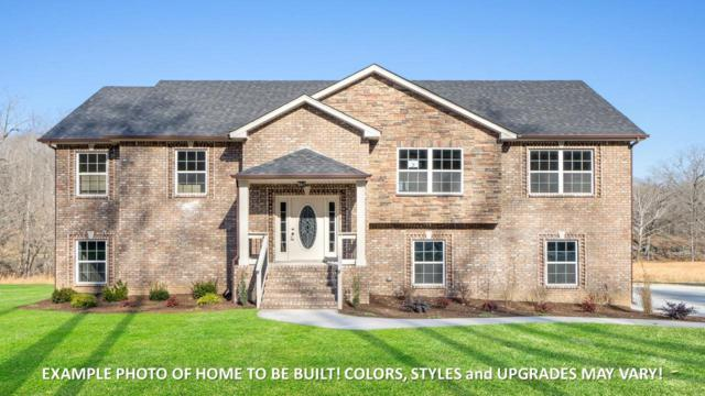 365 Old Highway 48, Clarksville, TN 37040 (MLS #1983691) :: John Jones Real Estate LLC