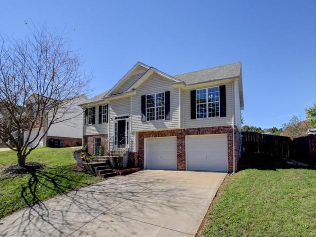 1672 Cedar Springs Cir, Clarksville, TN 37042 (MLS #1983726) :: EXIT Realty Bob Lamb & Associates