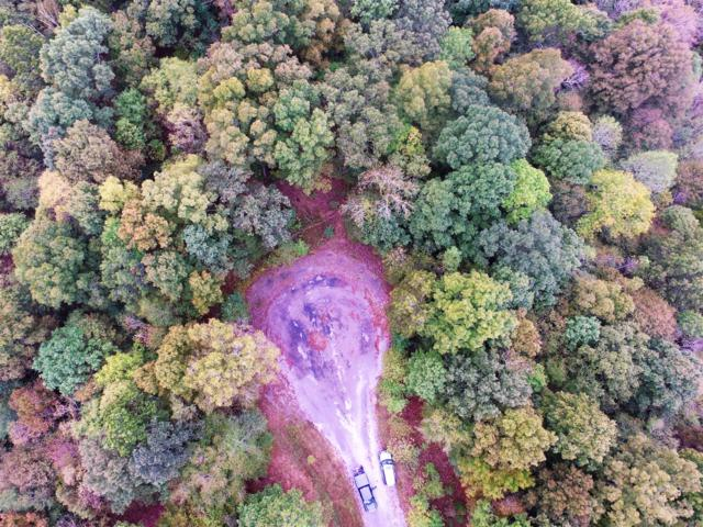 17 Autumn Trail Lot 17, Dover, TN 37058 (MLS #RTC1984369) :: Nashville on the Move