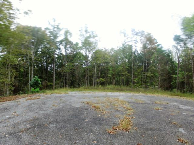 20 Andrew Lane Lot 20, Dover, TN 37058 (MLS #RTC1984373) :: Nashville on the Move