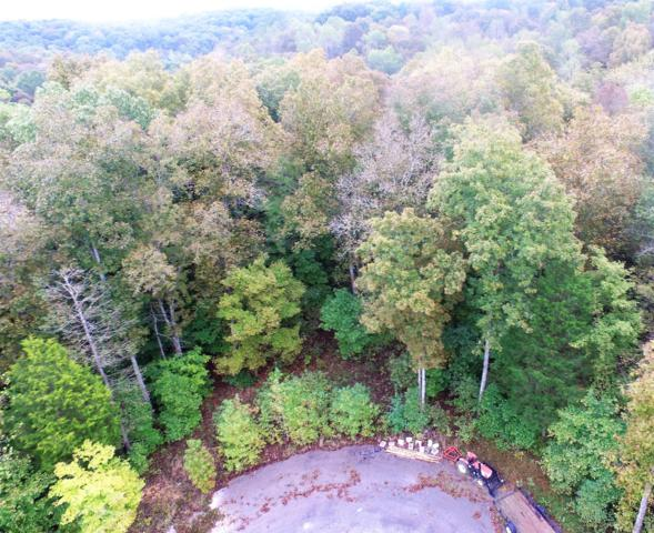 27 Dale Lane Lot 27, Dover, TN 37058 (MLS #1984379) :: Clarksville Real Estate Inc