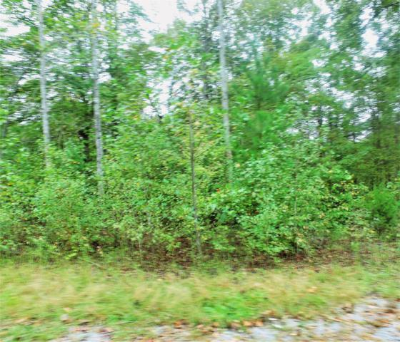 28 Dale Lane Lot 28, Dover, TN 37058 (MLS #RTC1984381) :: Nashville on the Move