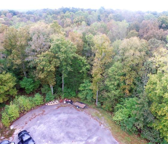 31 Lacy Lane Lot 31, Dover, TN 37058 (MLS #RTC1984385) :: Nashville on the Move