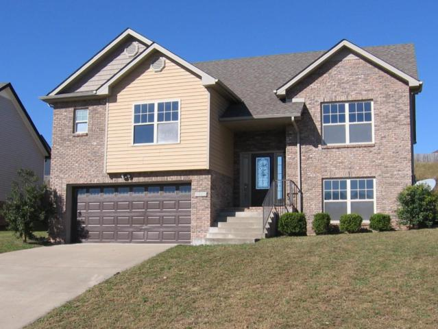 1053 Ishee Dr, Clarksville, TN 37042 (MLS #1984781) :: DeSelms Real Estate