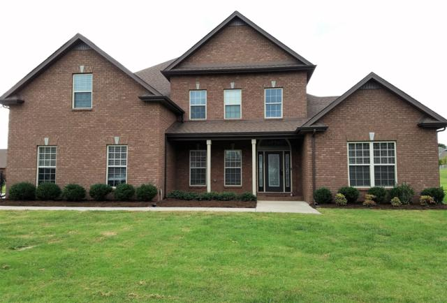 3152 Carrie Taylor Cir, Clarksville, TN 37040 (MLS #1985163) :: REMAX Elite